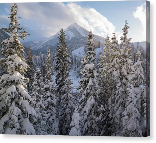 Winter In The Wasatch Canvas Print