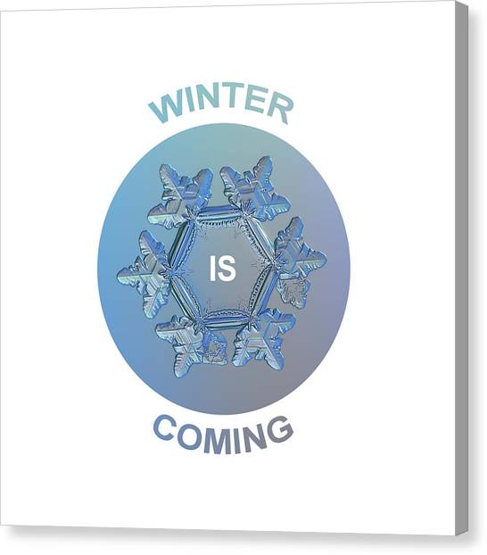 Winter Canvas Print - Winter Is Coming - Snowflake Illustration by Alexey Kljatov