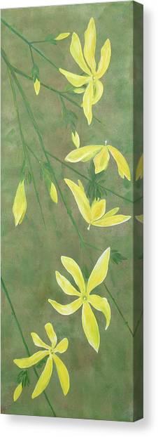 Winter Jasmine Canvas Print