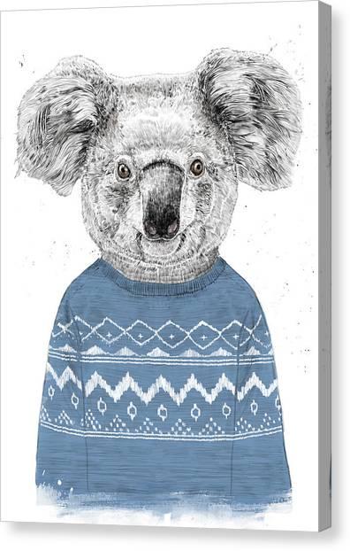 Koala Canvas Print - Winter Koala by Balazs Solti
