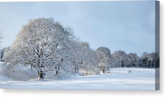 Canvas Print - Winter Landscape  by Richard Nixon