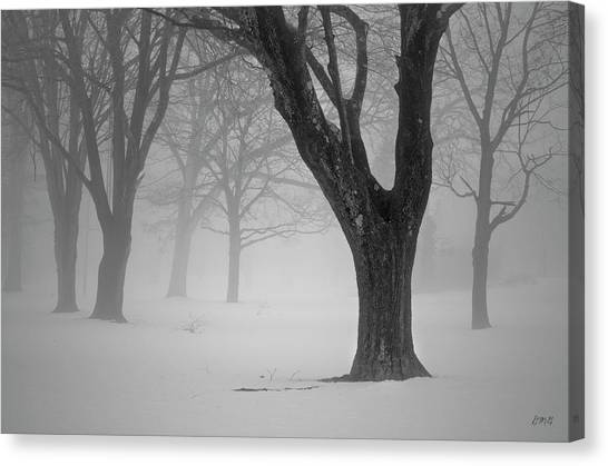 Winter Landscape V Canvas Print
