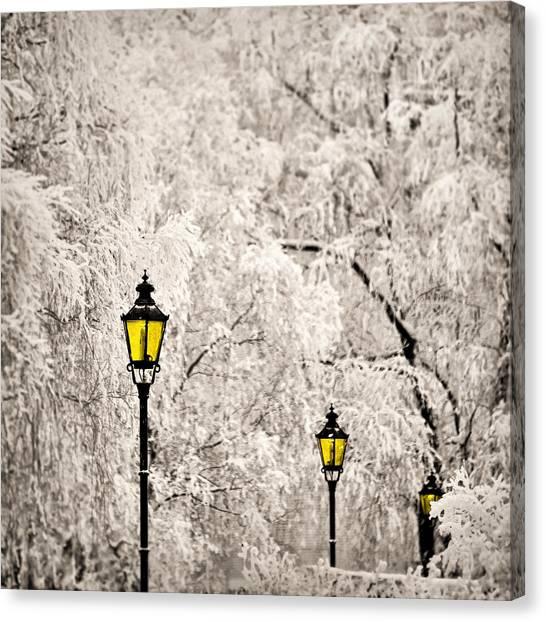Winter Lanterns Canvas Print