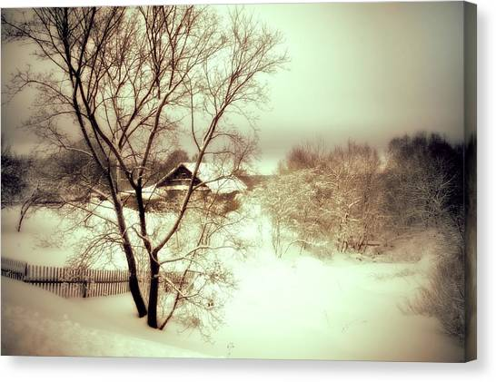 Winter Loneliness Canvas Print