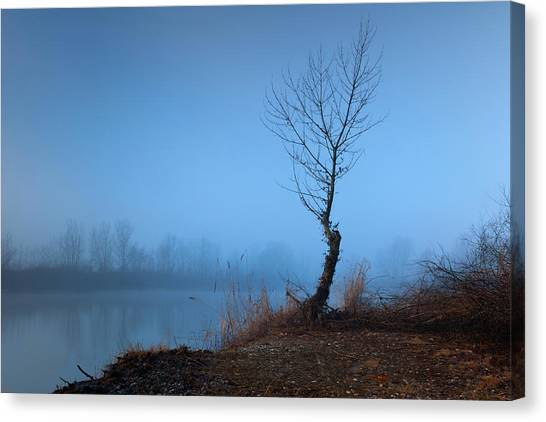 Winter Loner Canvas Print