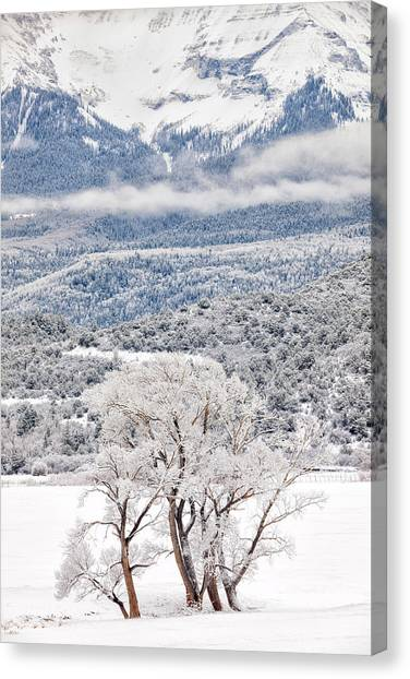 Canvas Print featuring the photograph Winter Magic by Denise Bush