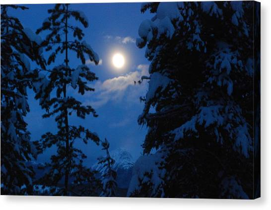 Winter Moonlight Canvas Print
