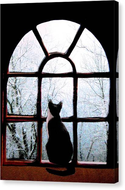 Winter Musing Canvas Print