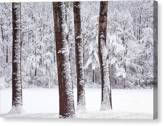 Winter On Paradise Pond Canvas Print