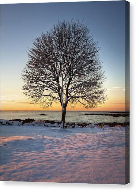Winter On The Coast Canvas Print