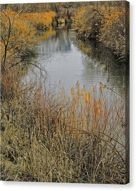 River Jordan Canvas Print - Winter On The Jordan River by David King