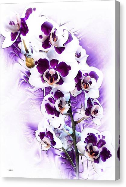 Winter Orchid Canvas Print