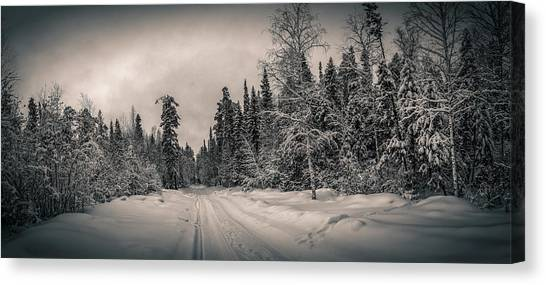 Ural Mountains Canvas Print - winter panorama snow-covered forest, Russia, the Urals by Alex Rudny