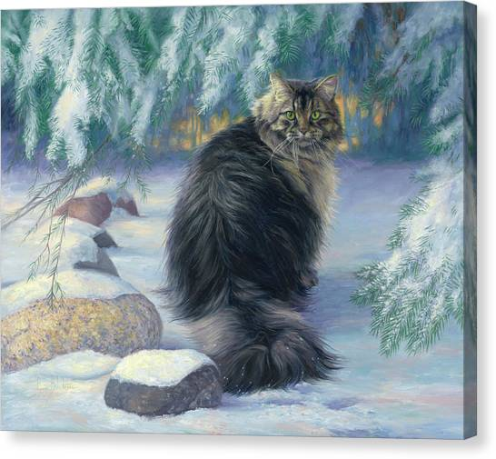 Main Coons Canvas Print - Winter Place by Lucie Bilodeau
