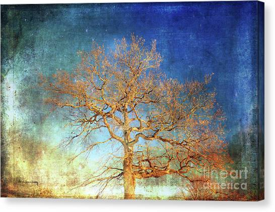 Winter Promise Canvas Print