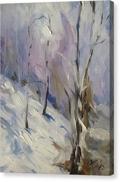 Winter Rage Canvas Print