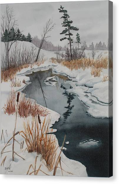 Winter Reflection Canvas Print by Debbie Homewood