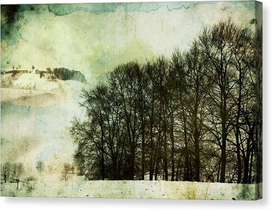 Winter Remembrances Canvas Print