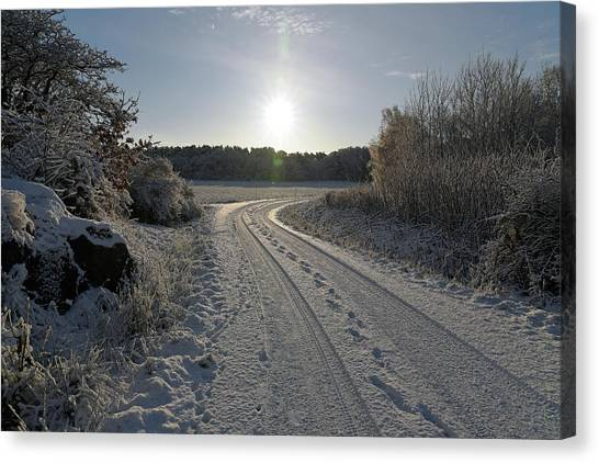 Winter Road Canvas Print