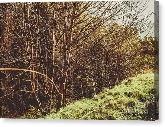 Brunch Canvas Print - Winter Rural Tasmania Details by Jorgo Photography - Wall Art Gallery