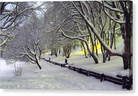 Winter Scene 1 Canvas Print by Sami Tiainen