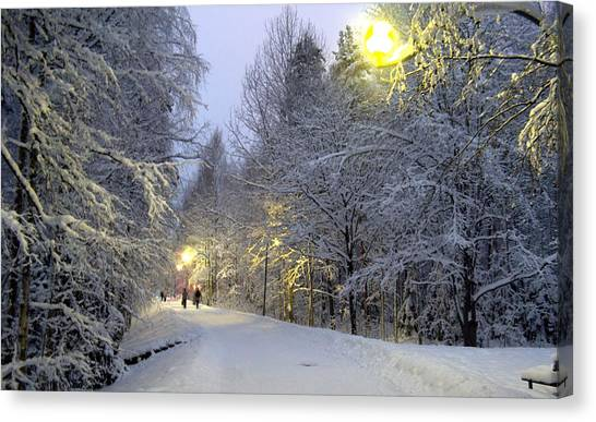 Winter Scene 5 Canvas Print by Sami Tiainen