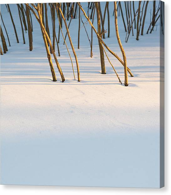 Winter Scene - Abstract Canvas Print