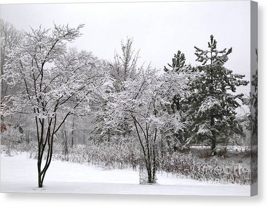 Hailstorms Canvas Print - Winter Scene by Douglas Sacha