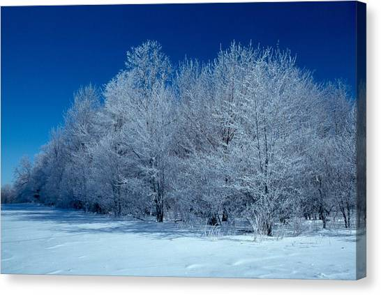 Winter Scene Canvas Print by Raju Alagawadi