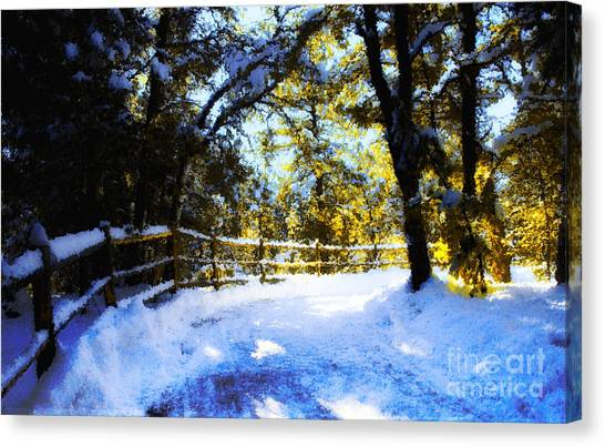 Winter Scene Canvas Print by Terry Runion