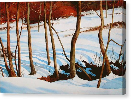 Winter Shadows Canvas Print by Faye Ziegler