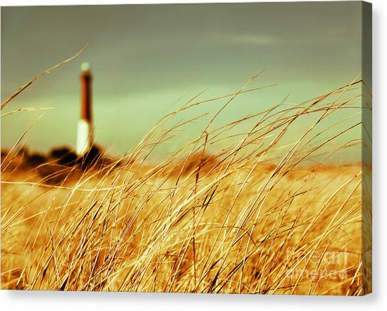 Winter Shore Breeze Canvas Print