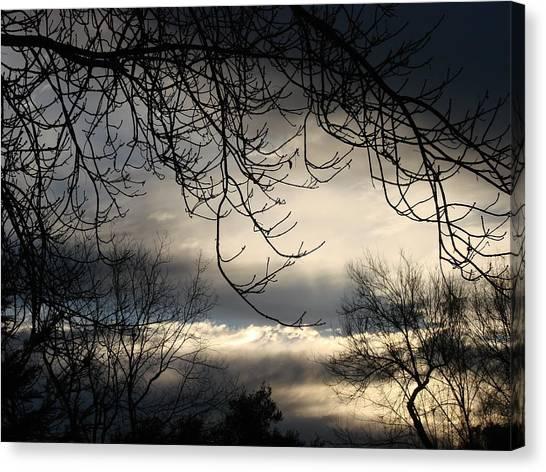 Winter Sunrise Canvas Print by Liz Vernand