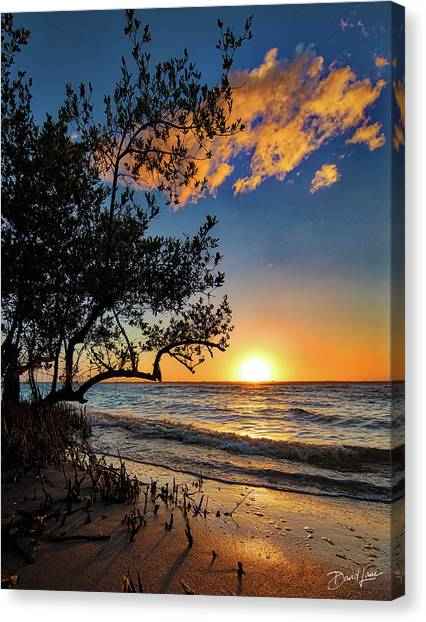 Canvas Print featuring the photograph Winter Sunset by David A Lane