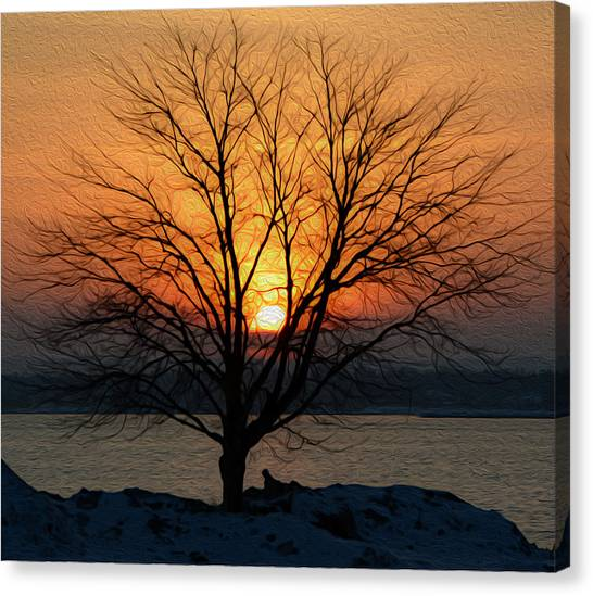 Winter Tree Sunrise Canvas Print