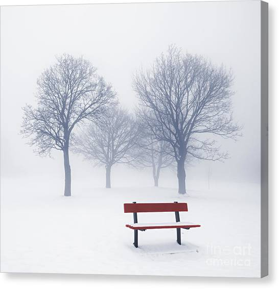 Winter Scenery Canvas Print - Winter Trees And Bench In Fog by Elena Elisseeva