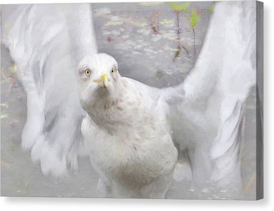 Winter Wings Canvas Print