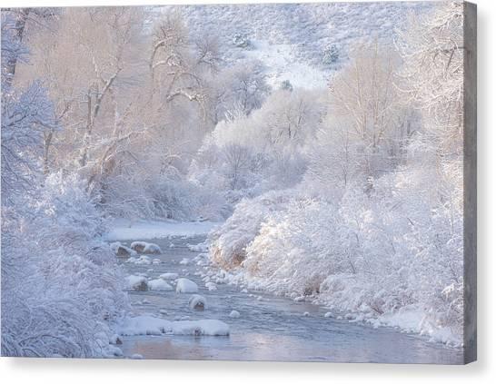 Winter Wonderland - Colorado Canvas Print