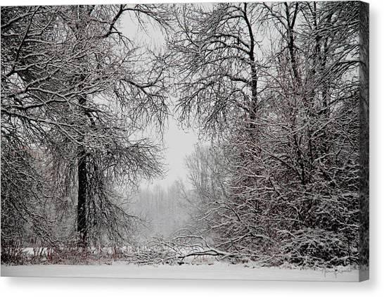 Winter Wonderland II Canvas Print