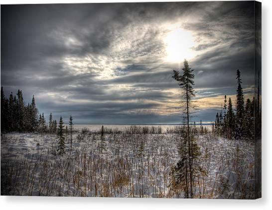 Winter Wonderland Canvas Print by Michel Filion