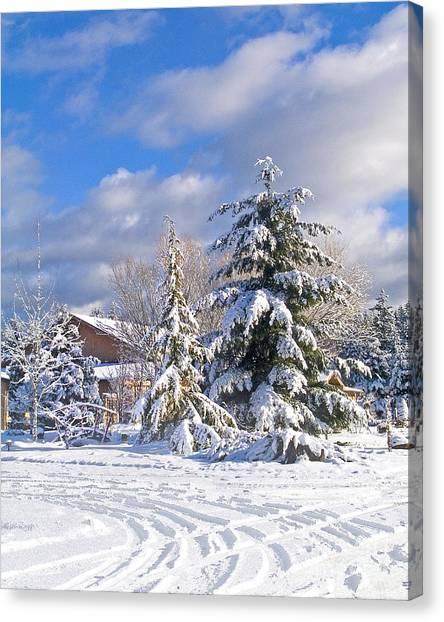 Winter Wonderland Canvas Print by Wilbur Young