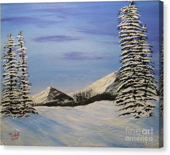 Winters Chill Canvas Print by Todd Androy