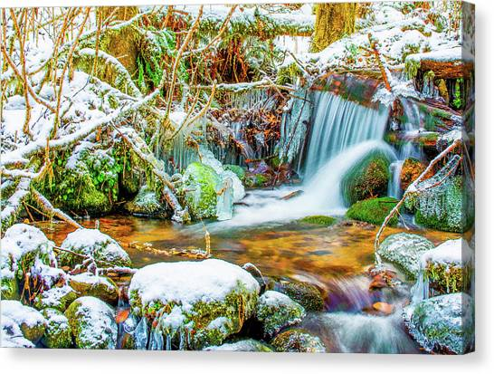 Winters Creek Canvas Print