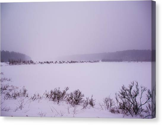 Winter's Desolation Canvas Print