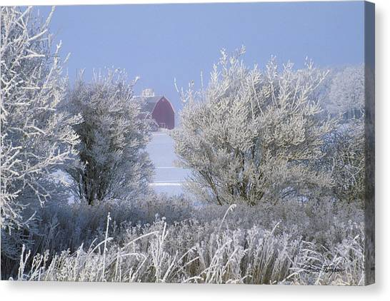 Winter's Embrace Canvas Print