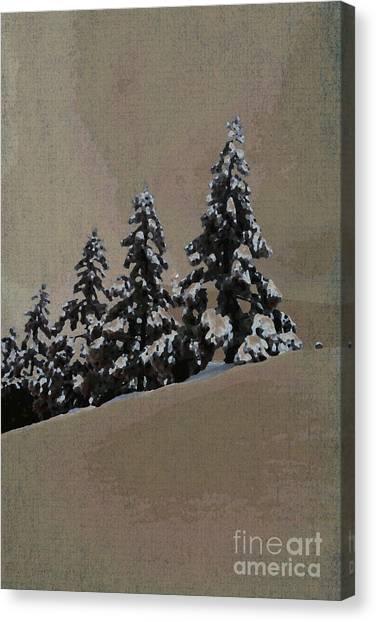 Winters Eve Canvas Print