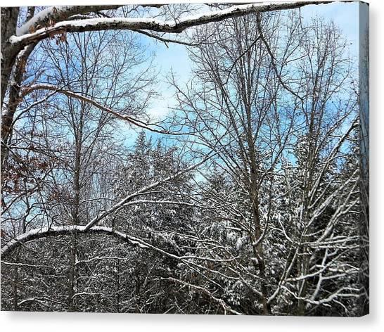 Winter's First Snow Canvas Print