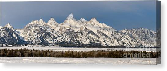 Winter's Majesty Canvas Print