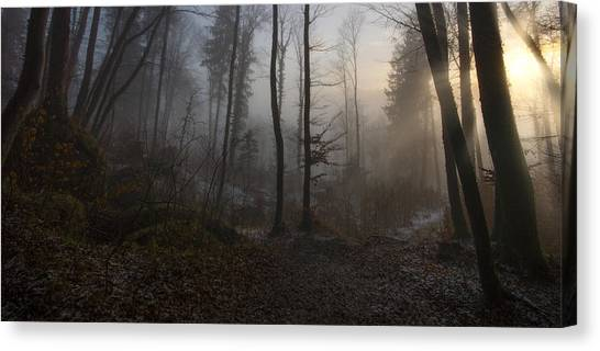 Foggy Forests Canvas Print - Winter's Slight Return by Norbert Maier