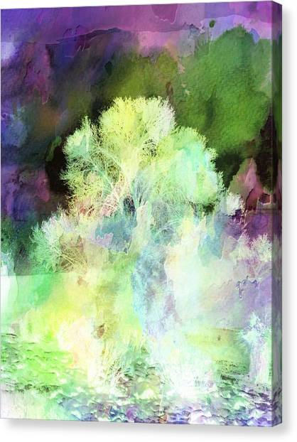 Winters Storm Canvas Print